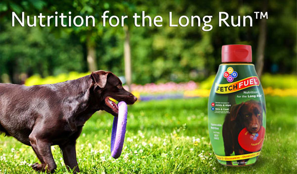 FREE FetchFuel For Dogs Sample