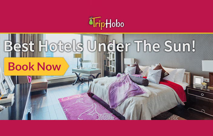 TripHobo – Hotel Booking