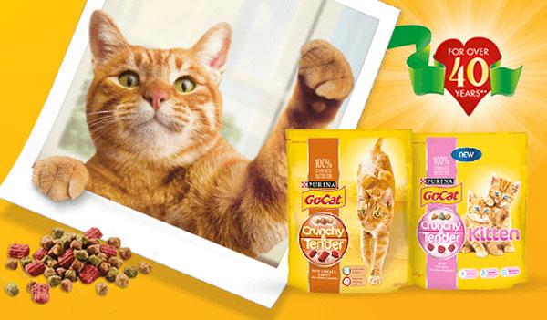 FREE Go Cat Crunchy & Tender Sample (UK)