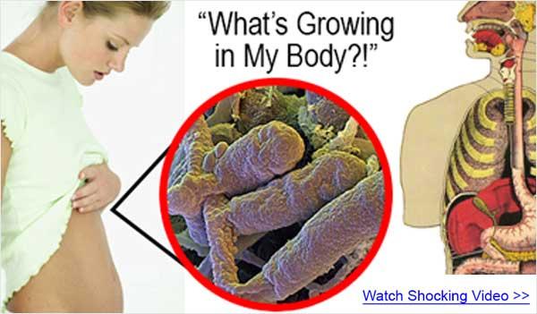 Probiotic America Coupon Code – Digestive Health (US)