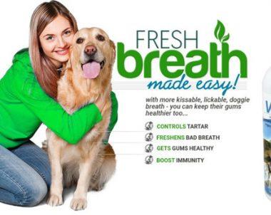 VitaPet Spray- Pet Dental Hygiene Product (75% Discount!)