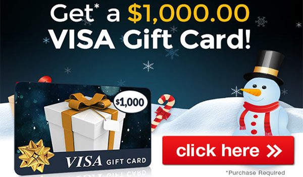 Winter Wonderland $1000 VISA Gift Card (US)