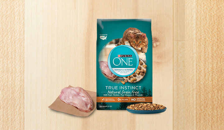 FREE Purina One Cat Food Sample (US Only)