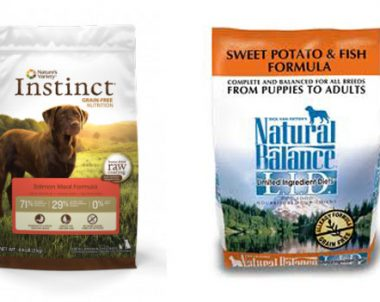 FREE Sample of Pet Food Pantry (NC)