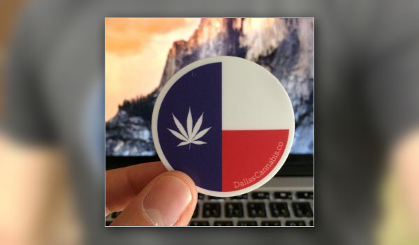 FREE Dallas Cannabis Company Stickers! (US)