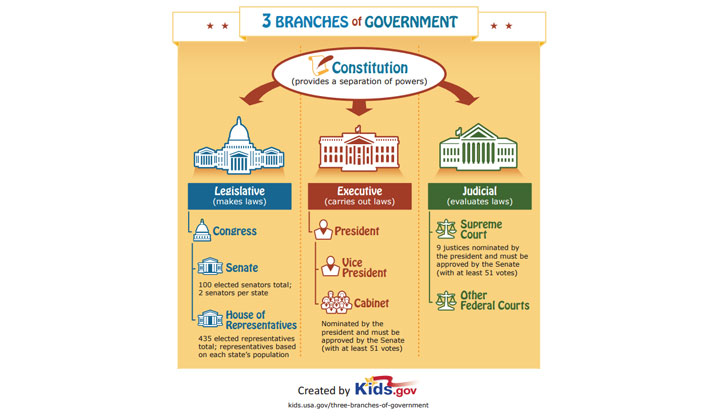 3 FREE Branches of Government Poster (US Only)