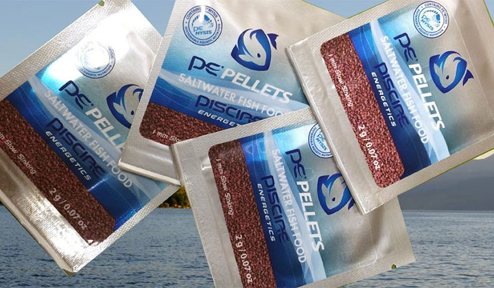 Free pe mysis pellet fish food sample from piscine for Free fishing samples 2017