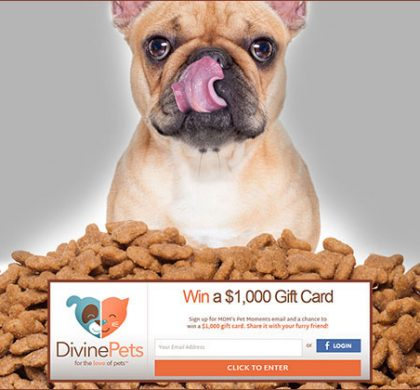 WIN Free Pet Food for a Year (US Only)