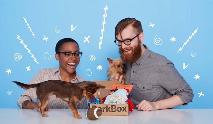 BarkBox Subscription – Toys and Treats Delivered to Your Door
