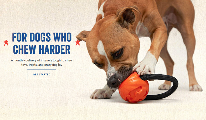 BarkBox Super Chewer Toys Stay Fun Longer Than Normal Toys