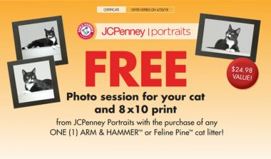 FREE Photo Session For Your Cat and 8 x10 Print from JCPenney Portraits