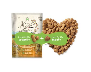 FREE Sample of Purina Muse MasterPieces Natural Dry Cat Food